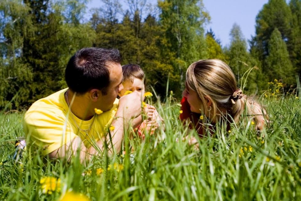 Шта је најбитније знати о алергијама